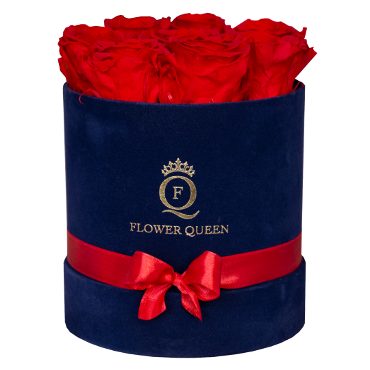 Red roses in medium blue, velvet box