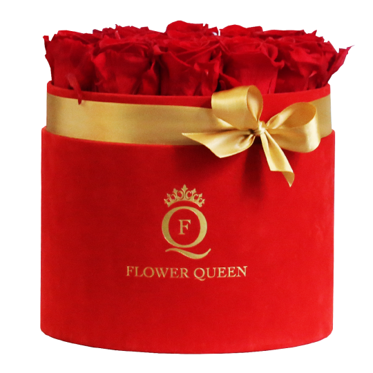 Red roses in large red, velvet box