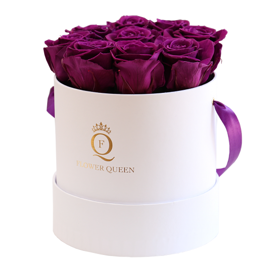 Violet roses in medium white box