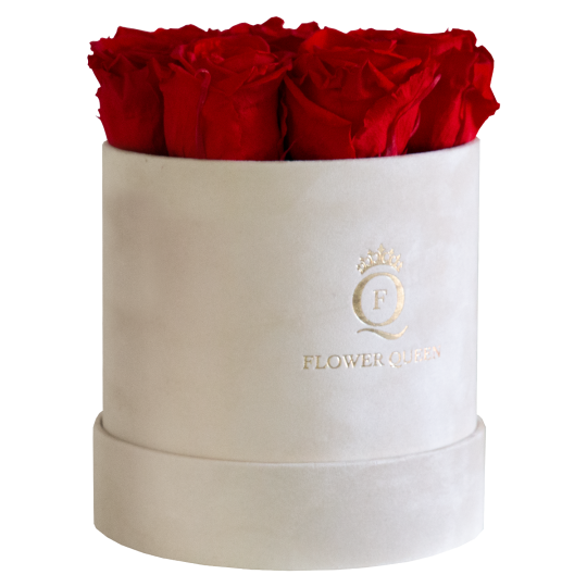 Red roses in medium light beige, velvet box