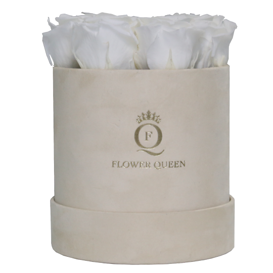 White roses in medium light beige, velvet box